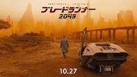 2017年11月21日(火)