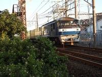 東海道本線 朝の撮影3