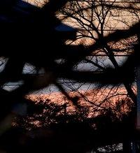 一枚の夕空と断捨離