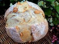 Mix酵母 いろんなパン