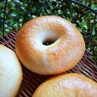 金柑酵母 ベーグルとチーズぱん