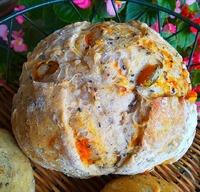 ジュース酵母 モチ麦かぼちゃぱん