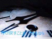 c あおなみ草子・Gコーラス 213